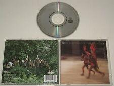 PAUL SIMON/THE RHYTHM OF THE SAINTS(WARNER BROS. 7599-26098-2) CD ALBUM
