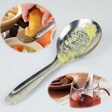 Ginger Grater for Garlic Wasabi Fruits Root Vegetables Shovel Stainless Steel LE