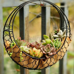 Iron Wire Moon Shape Succulent Pot Metal Hanging Planter Plant Holder Basket QZ