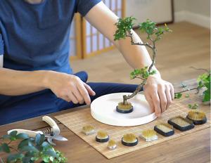Kenzan rund 23 34 40 46mm japanischer Steckigel für Ikebana Blumenarrangements