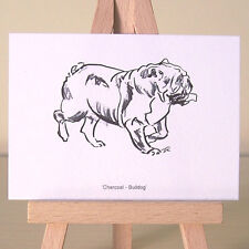 Miniature Bulldog drawing ACEO art card ~ small enough to take on a walk