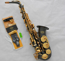 SALE!!! Professional TaiShan Alto Saxophone Black Nickel Gold sax High F# W/Case