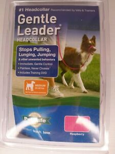 Gentle Leader Dog Headcollar Medium Dogs (25-60lbs) Raspberry Color - w/ DVD NOB