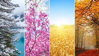 Four Seasons - Colourful Landscapes Wall Art Large Poster / Canvas Pictures