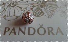 PANDORA WHITE PRIMOSE MEADOW CHARM 781488EN12 NEW