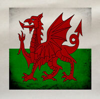 Welsh Dragon Wales Printed Fabric Panel Make A Cushion Upholstery Craft