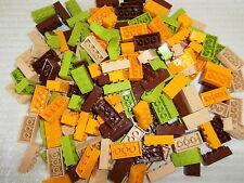 LEGO 180 Bausteine 2x4 Noppen 3001  in hellgrün, hellorange, braun u. beige  NEU