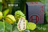 Noni Gia by BHIP GLOBAL - Antioxidant Noni Fruit Immune System Support a Healthy