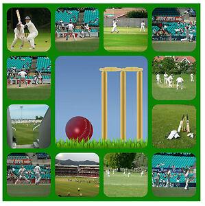 Cricket - Souvenir Nouveauté Dessous - Nettoyage Facile - Tout Neuf / Sport /