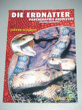 "NTV Art for Art ""Die Erdnatter"""