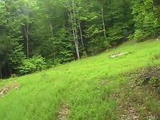 5 Acres Upstate NY land outside Ellensville in Wawarsing, Ulster County New York