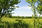 Woodland & Meadow Freehold property sale Bulgarian 4 house Bulgaria Monthly pay