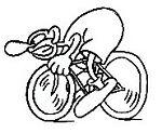 bike-empire