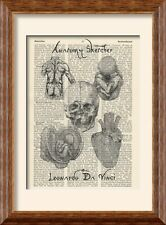Art Print - Leonardo Da Vinci - Anatomy Sketches on Antique Book Page - Vintage