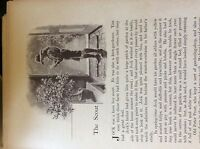 M17b7 ephemera 1920s short story the scout dorothy king