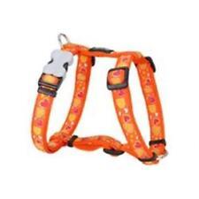 Articles orange Red Dingo pour chien