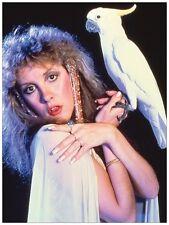 Stevie Nicks 18X24 Poster