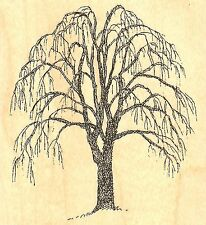 Willow Tree Wood Mounted Rubber Stamp IMPRESSION OBSESSION - NEW, E1298