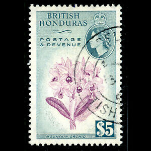 BRITISH HONDURAS 1953 $5 Orchid. Flower. SG 191. Fine Used. (WG673)