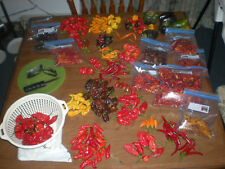 BHUT JOLOKIA + 5 OTHER VARIETIES **SUPER HOT PACKAGE**