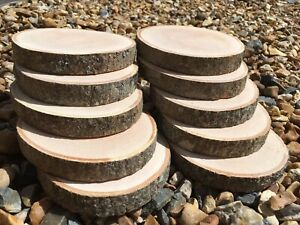 10x Real wood Log Slices Tree Ash piece Table Coaster Uk Made 10-11x2Cm