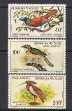 Malagasy 1963 Birds/Nature/Wildlife/Ibis 3v airs n23611