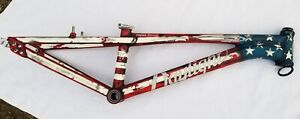 DAYLIGHT CYCLES ARC C1 PRO 24 CUSTOM PAINTED USA HANDMADE BMX RACE BIKE CRUISER