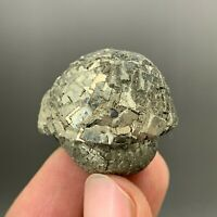 Natural globular pyrite mineral crystal collection  Y181