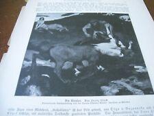 Nidec centaur in Art Prints   eBay