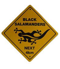 Noir salamandre large jaune oz autocollant-OZ155-new