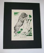 Irish Setter Dog Print Diana Thorne Bookplate 1940 Matted Puppy Looking At Frog