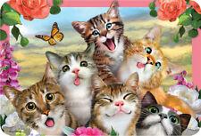 EuroGraphics Howard Robinson Cats Selfie 3D Placemat