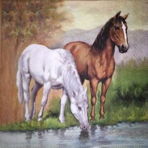 4 x Single Paper Napkins - Decoupage - 3 Ply - Craft -  White Brown Horse - B41