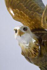 Vintage Hutschenreuther Porcelain Eagle, designed by Karl Tutter Made in Germany