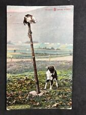 "Vintage Postcard: Animals #A118: Reliable Series: ""So Near & Yet So Far"" Cat Dog"