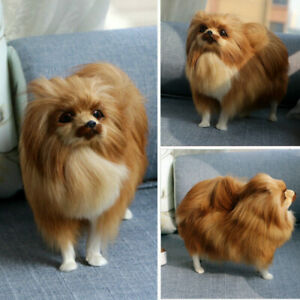 Realistic Simulation Dog Toy Plush Pomeranian Toy Doll Stuffed Animal Kids AU