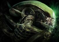 ALIEN Movie PHOTO Print POSTER Film 1979 Ridley Scott Textless Glossy Sci-Fi 004