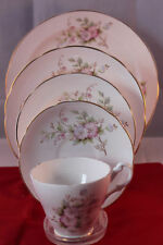 Porcelain/ China