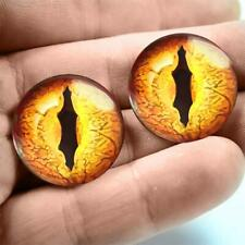 Glass Dragon Eyes Halloween Taxidermy Eyeballs 20mm