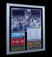WOLVES / WOLVERHAMPTON 1974 LEAGUE CUP FINAL LTD FRAMED+EXPRESS GLOBAL SHIPPING