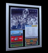 WOLVES / WOLVERHAMPTON 1974 LEAGUE CUP FINAL LTD FRAMED+EXPRESS GLOBAL SHIPPING