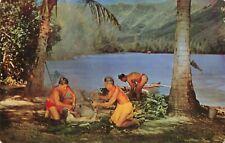 Postcard Preparing Hawaiian Luau