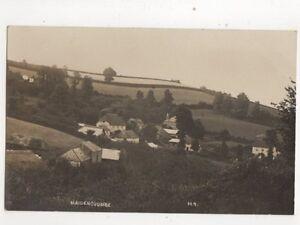Maidencombe Devon [M9] Vintage RP Postcard 338b