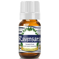 Ravensara Essential Oil (Premium Essential Oil) - Therapeutic Grade - 10ml
