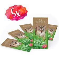 5 Sachets de Graines D'herbe À Chat Pretty Kitty Paquet Semence Menthe Aux...