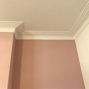 Plaster Coving. Claridges C6. Delivery available. Hand Made 3m lengths.