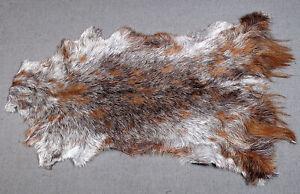 GOAT Western taxidermy Hide Rug Natural Pattern Fur Goat Hide Rode SA-3566