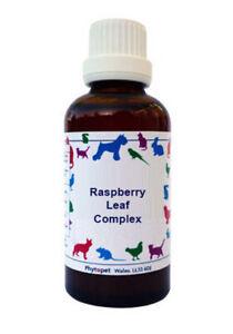 Phytopet Herbal Remedies Raspberry Leaf Complex 30ml dog cat pregnancy birth