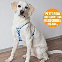 Pettorina Imbragatura per Cani Collare Taglia Unica Regolabile 35 - 50 cm