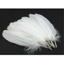 Australian White  SMUDGE Feather wand ritual alchemy  White Witch Carmen